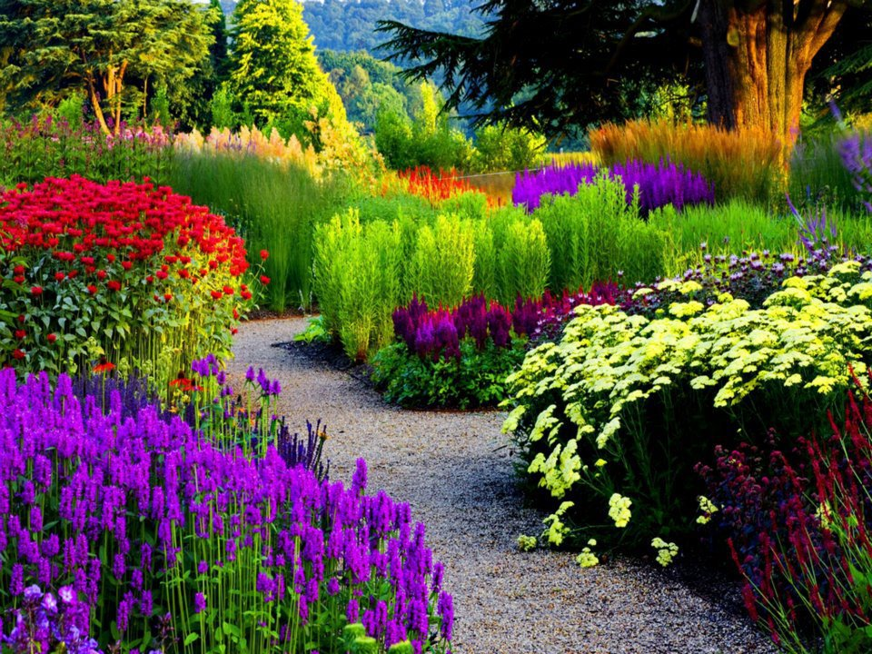 Beautiful-Garden-for-Home