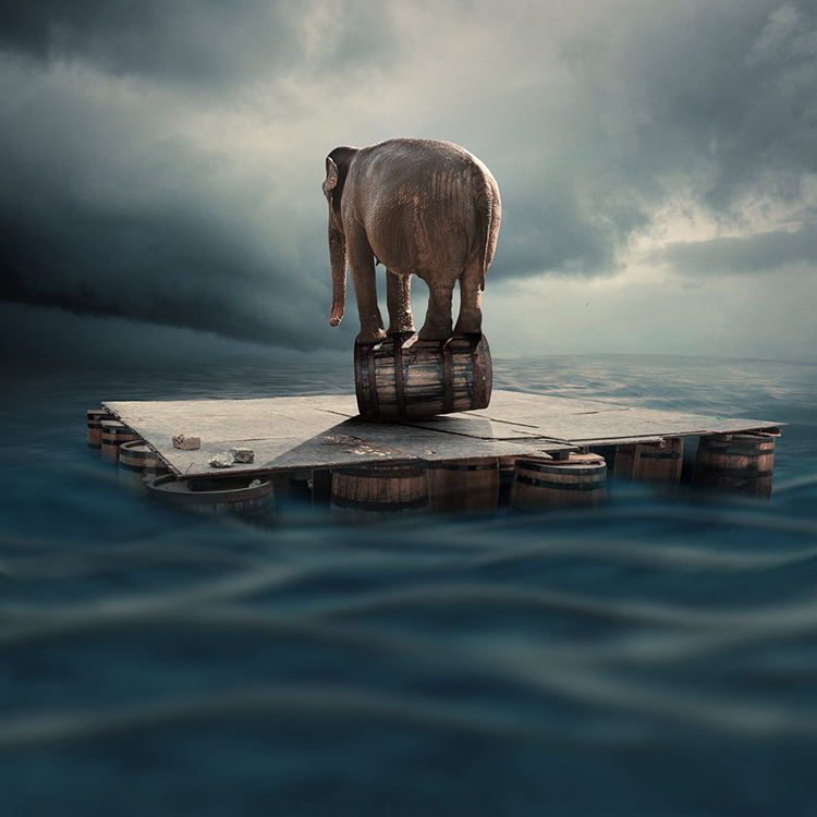 Caras-Ionut-photography-manipulations-Swabble-15