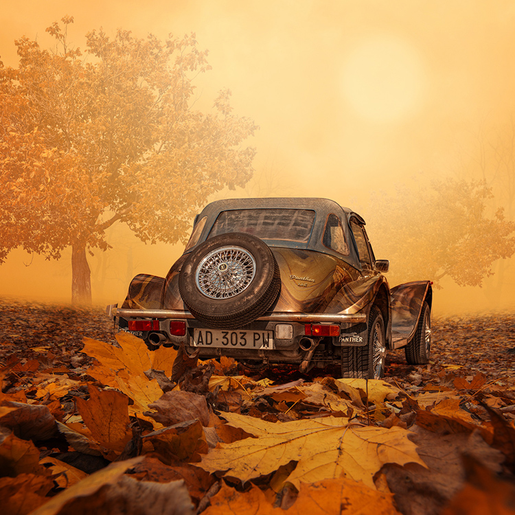 Caras-Ionut-photography-manipulations-Swabble-17