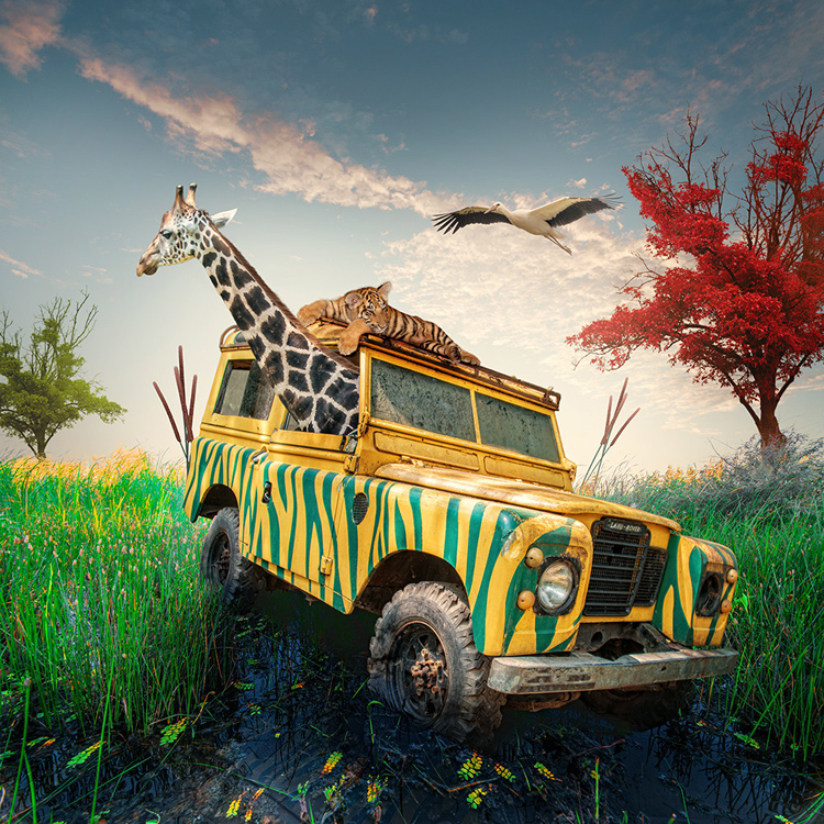 Caras-Ionut-photography-manipulations-Swabble-3