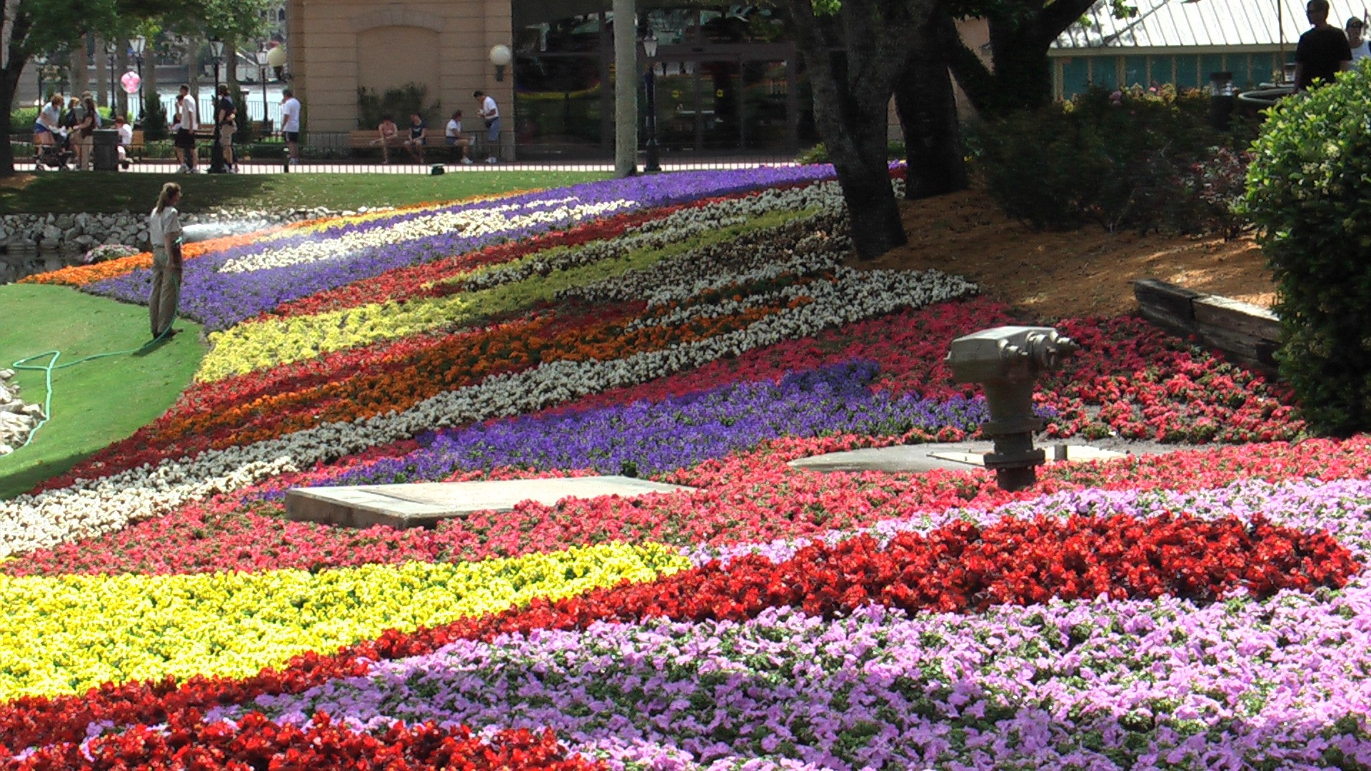 Flowers-Gardens-Epcot-Landscapes-Beautiful-HD-Wallpapers