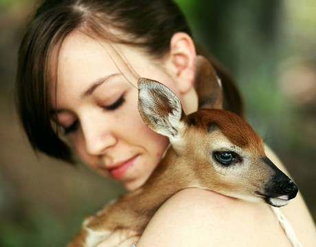 In Love With Bambi